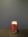 Indian Summer Session Ale